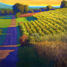 "Evening at the Vineyards, Tuscany - Oil on canvas 36"" x 36"""